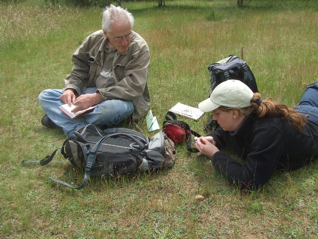 Erfassung, Beobachtung von Flora und Fauna