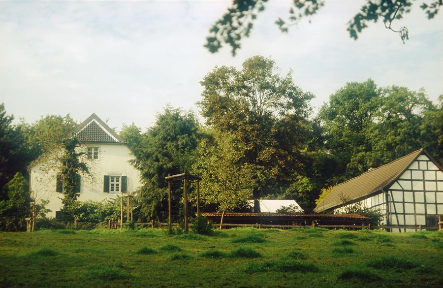 Forsthaus Steinhaus 2006