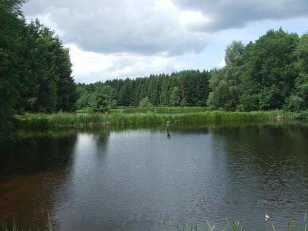 Teichanlage im NSG Gierssiefen, Bennerscheider Teichkette genannt