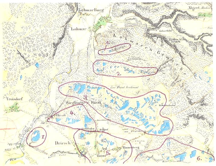 Ausschnitt aus Preu�?ischer Uraufnahme von 1845