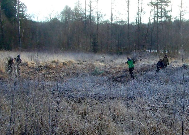 Ehrenamtler-Einsatz im Hirzenbachmoor