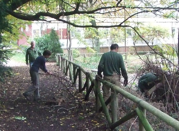 Naturschutzeinsatz am Waldhausteich