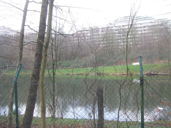 Wald- und Grünfläche an der Böttcherbachaue in Bockenberg soll Gewerbegebiet weichen