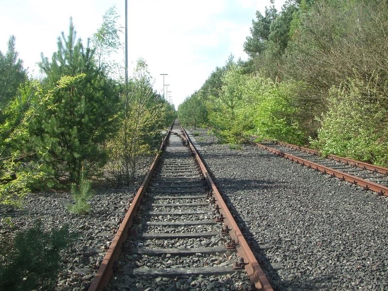Verbuschte Gleisanlage im April 2014