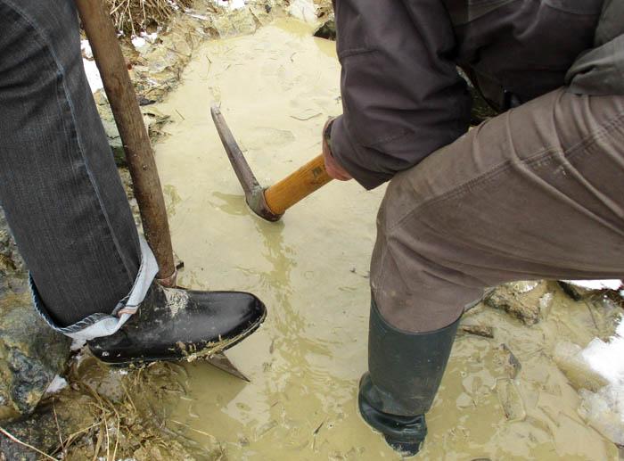 Ehrenamtlicher Einsatz für die Unken, kurz über der Frostgrenze