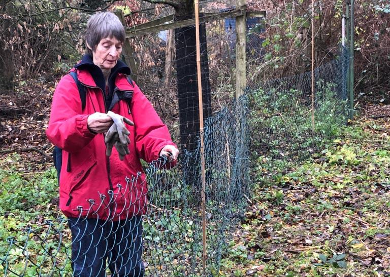 Die Wiese wird provisorisch geschlossen, als Schutz für Wildtiere