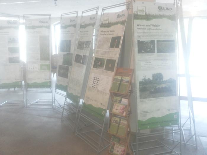 Wiesen- und Weidenausstellung im Turmhof
