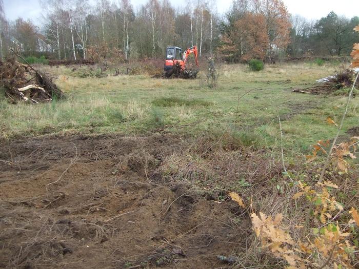 Wiederherstellung von Heideflächen