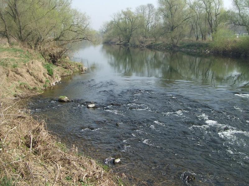 Selbst in Naturschutzgebieten ist das Ufer der Sieg verbaut