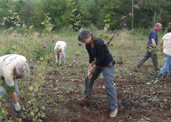 BUND-Aktive beim Naturschutzeinsatz