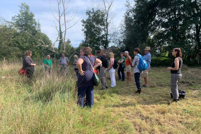 Botanische Exkursion auf der Strundewiese