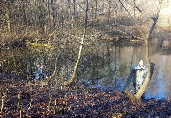 Februar 2019: Ehrenamtler vom Bündnis Heideterrasse schneiden die Kaukasische Flügelnuss zurück, um mehr Sonne im Uferbereich zu ermöglichen