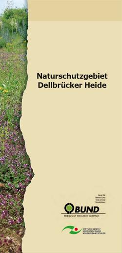 Faltblatt NSG Dellbrücker Heide