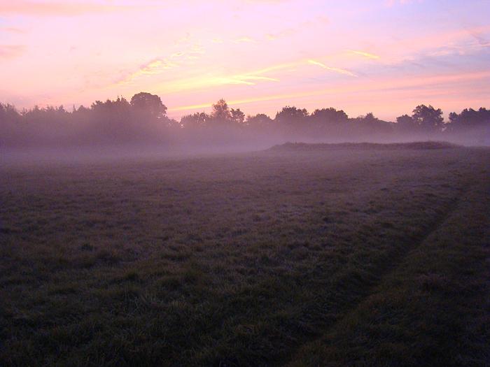 Sonnenuntergang in der Wahner Heide