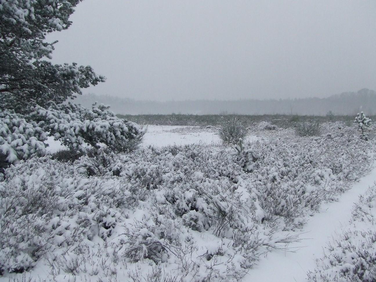 Becken 2 im Winter