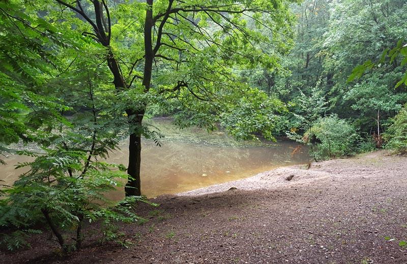 Der Teich in einem alten Steinbruch