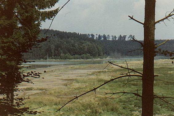 Blick auf den Grünewaldteich 1986